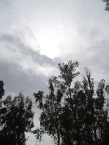 """"""". . . just as he came up from the water, suddenly the heavens were opened to him and he saw the Spirit of God descending like a dove and alighting on him.""""  (Matthew 3:16)  The heavens at the Jordan River, Galilee.  9 March 2014."""
