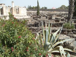 A View at Capernaum from the Sea of Galilee to the Synagogue -- Peter's home (not pictured) between the two.