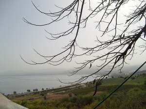 "Sea of Galilee from the Mount of the Beatitudes.  ""And Jesus said, 'Blessed are the peacemakers; for they will be called children of God'."" (Matthew 5:9)"