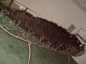 First Century boat excavated from the Sea of Galilee.