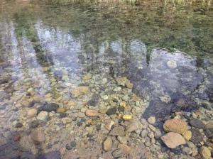 Hermon Stream Nature Reserve.